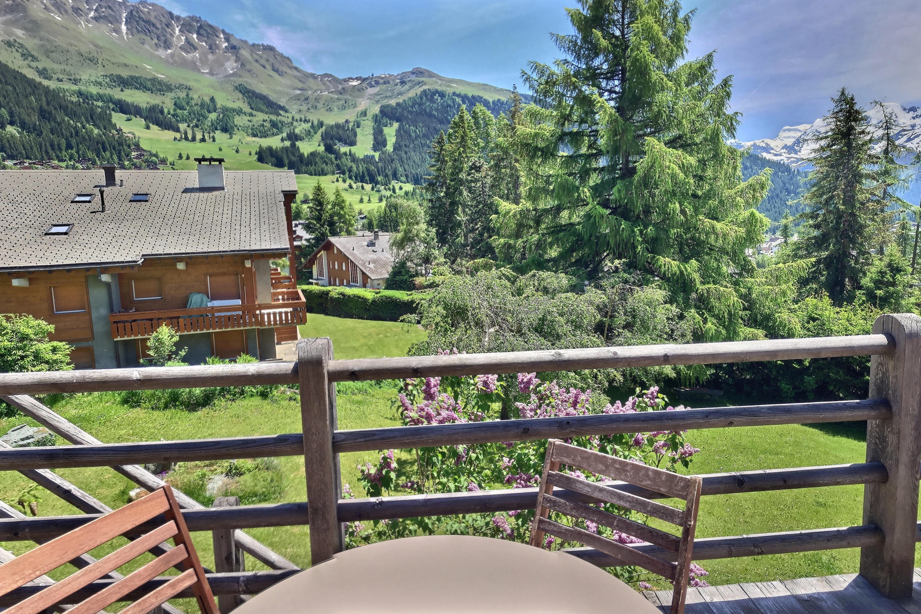 Outside area chalet verbier looking valley