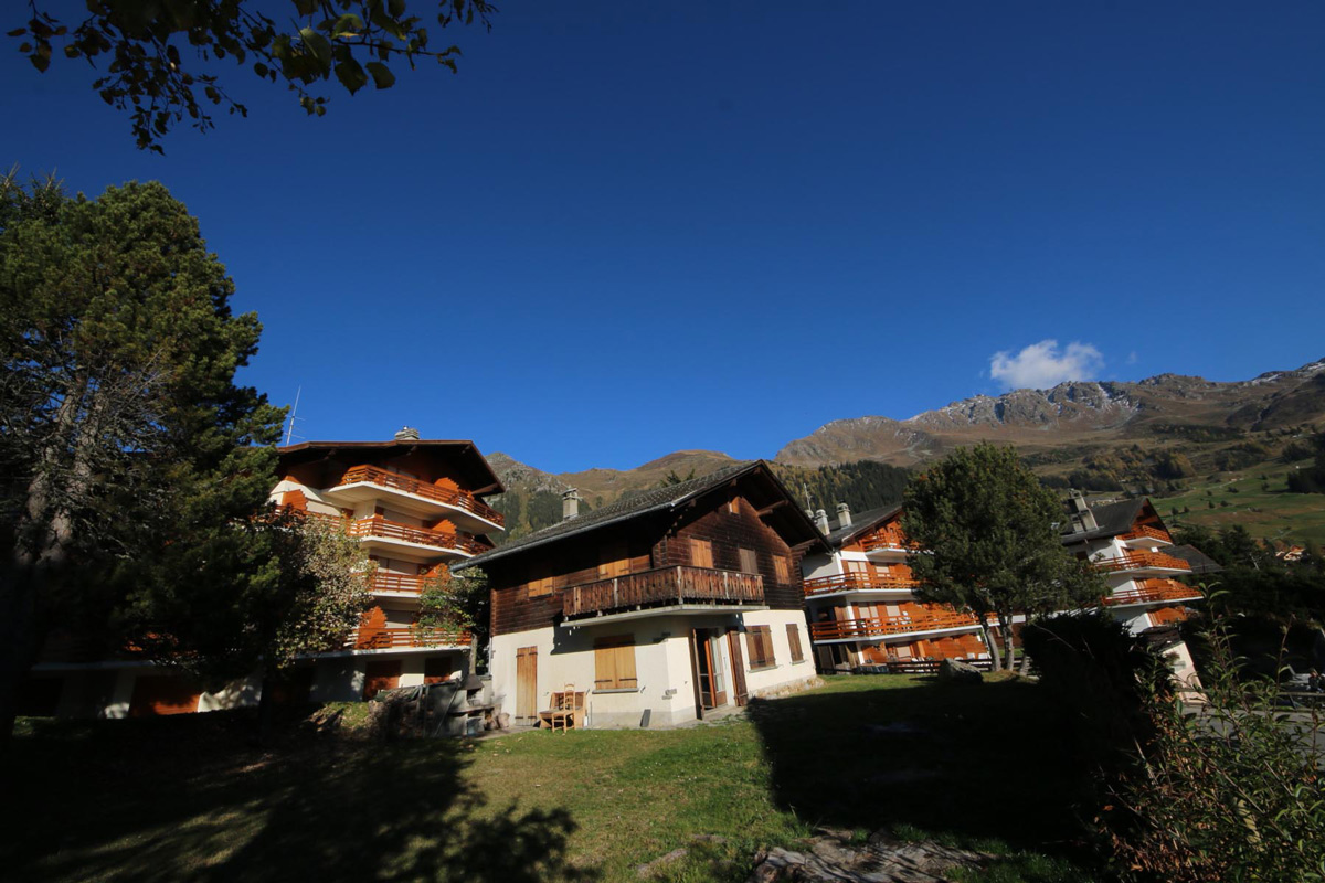 Verbier Chalet near mountain with tree