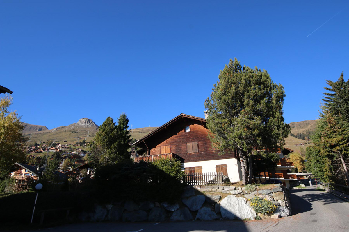 Verbier chalet Gelinotte outer seen with tree