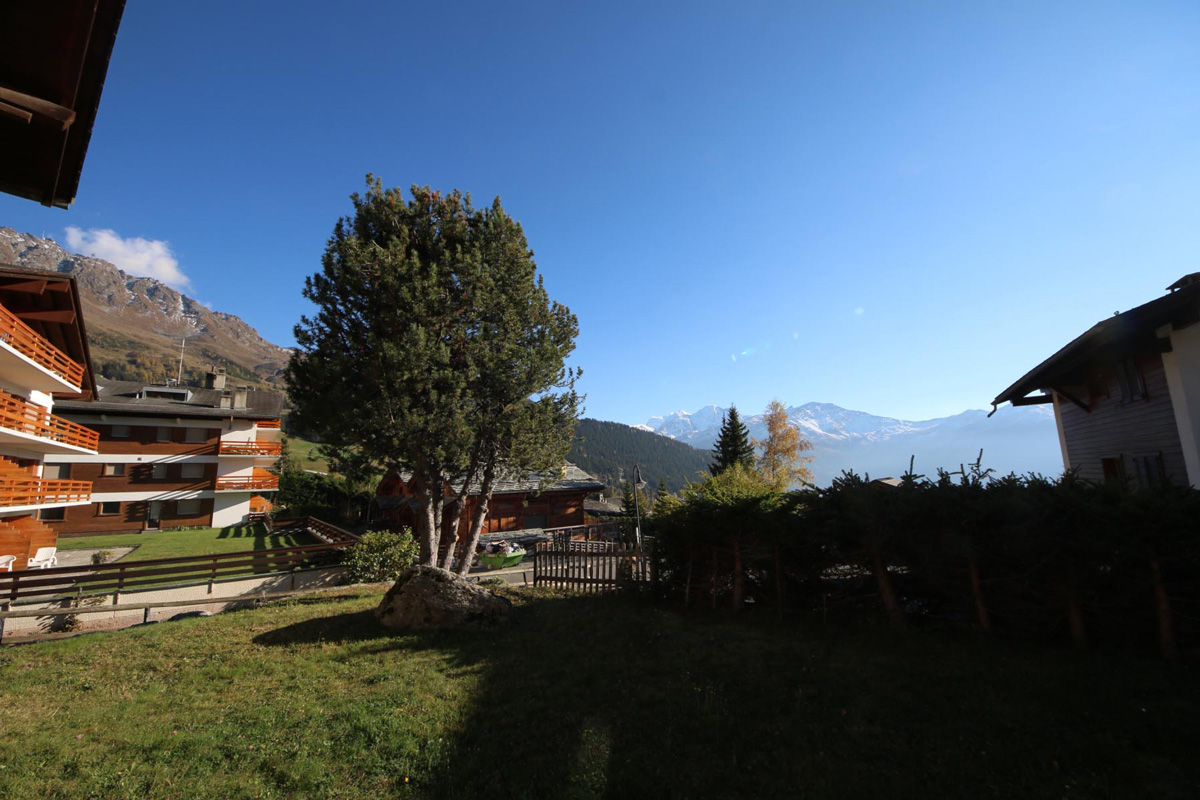 Verbier house outside with tree and mountain view